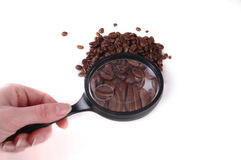 Coffee Beans. A pile of coffee beans under a magnifying glass stock photos