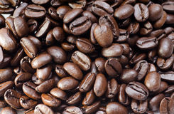Coffee beans. Closeup macro shot of coffee beans royalty free stock image