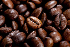 Coffee Beans. Close up view of some Stock Photos