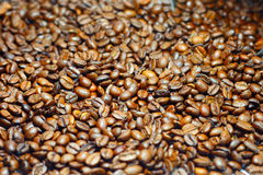 Coffee beans. Detail of roasted coffee beans Stock Image
