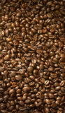 Coffee beans. Expanse of roasted coffee beans Royalty Free Stock Photos