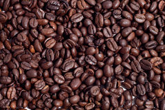 Coffee beans. Isolated on white backgound stock photos