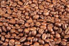Coffee beans. A background with coffee beans Stock Photos
