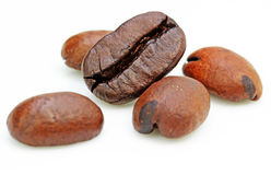 Free Coffee Beans Stock Images - 19449434