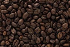 Coffee beans. Brown coffee beans background abstract Stock Image