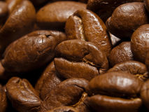 Coffee beans. Close-up shot of roasted coffee beans Stock Images