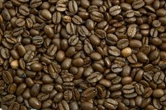 Coffee beans. Texture background close up Stock Images