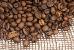 Coffee beans-2 Stock Photography