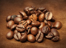 Coffee Beans. Close-up shot of coffee beans Stock Photo