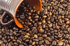 Coffee beans. Falling from a coffee cup Stock Photography