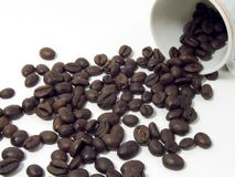 Coffee beans. Going out from a cup on a white background Stock Images