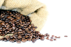 Free Coffee Beans Royalty Free Stock Image - 20737636