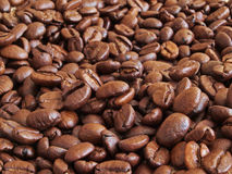 Coffee beans. Close up shot of dried coffee beans Stock Photo