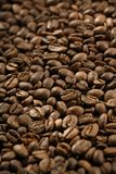 Coffee beans. Roasted coffee beans. Shallow depth-of-field Stock Photos