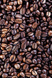Coffee beans. Closeup of a pile with coffee beans Stock Images