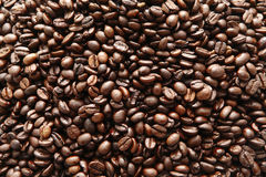 Coffee beans. Coffee bean / beans closeup background Stock Photography