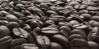 Coffee Beans. Sea of Beans Royalty Free Stock Images