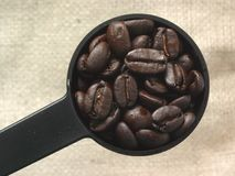 Coffee Beans. Coffee Bean in Scoop with Burlap Background Stock Photos