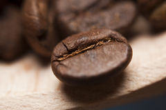Coffee beans. Extreme macro close up shot Royalty Free Stock Images