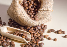 Coffee beans. In a linen bag and a wooden spoon Stock Image