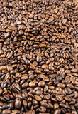 Coffee beans. Scattered, fried thoroughly Royalty Free Stock Images