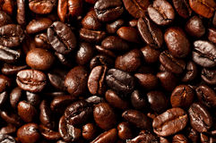 Coffee Beans. A closeup of home roasted Colombian coffee beans Royalty Free Stock Photo