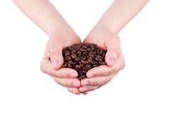 Coffee Beans. Female hands with roasted coffee beans Royalty Free Stock Photography
