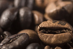Coffee beans. Closeup with brown  coffee beans Royalty Free Stock Photography