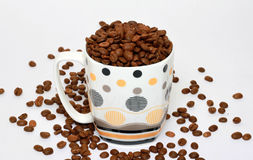 Free Coffee Beans Royalty Free Stock Images - 24466279