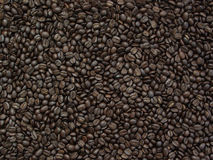Coffee Beans. Wide Shot of Coffee Beans Stock Photos