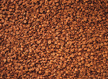 Coffee beans. Floors of fresh coffee beans Stock Photos
