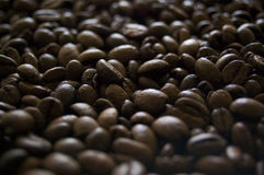 Coffee beans. Laying on a plate Stock Photos