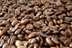 Coffee beans. A still life of coffee beans, can be used as a background royalty free stock image