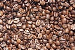 Coffee Beans. Close-up shot of Coffee Beans Royalty Free Stock Image