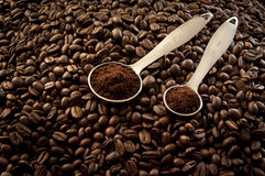 Coffee beans. Roasted coffee beans whole and ground in measuring spoons Stock Photos