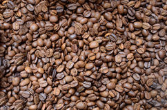 Coffee beans. Roasted coffee beans, can be used as a background Royalty Free Stock Photography