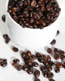 Coffee beans. Closeup image of coffee beans and coffe cup on white table Royalty Free Stock Photography