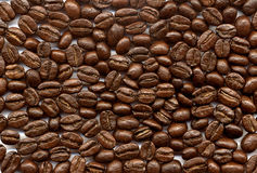 Coffee-beans Royalty Free Stock Images