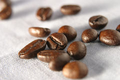 Coffee beans. On cloth,shallow DOF royalty free stock images