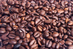 Coffee Beans. Fresh coffee beans in a bulk Stock Images