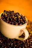 Coffee Beans. A cup full of gourmet coffee beans Royalty Free Stock Image