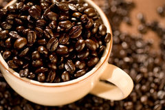 Coffee Beans. A cup full of gourmet coffee beans Stock Photo
