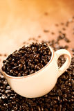 Coffee Beans. A cup full of gourmet coffee beans Stock Photography