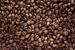 Free Coffee Beans Royalty Free Stock Image - 34562916