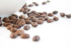 Coffee beans 35 Royalty Free Stock Photography