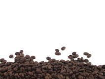 Coffee beans. Scattered coffee beans on the light background Stock Images
