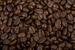 Coffee-beans. Close up of the coffee-beans Stock Photo