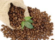 Coffee beans. In the bag with green leaves easy to isolate on white background Royalty Free Stock Images