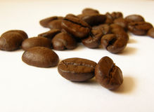 Coffee beans. Close up details of whole coffee beans Royalty Free Stock Images