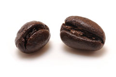 Coffee beans. Macro shot of coffee beans Royalty Free Stock Image
